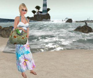 beachin at Baja Norte