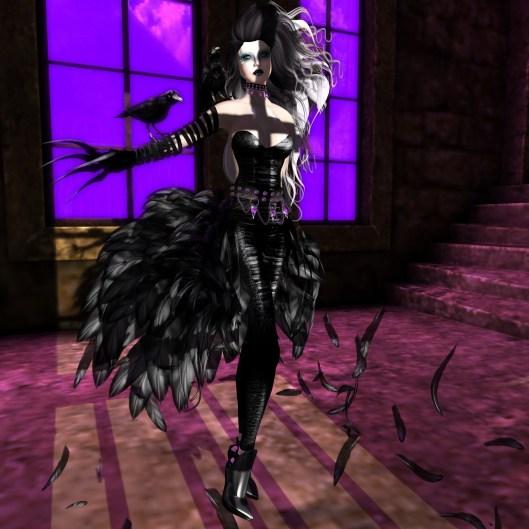 raven_002